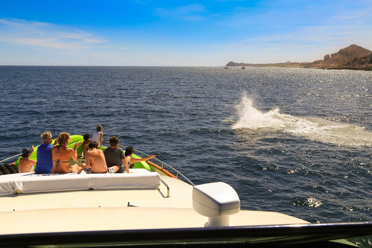 Cabo San Lucas Yacht Charters, Boat Rentals Los Cabos, Baja, boats